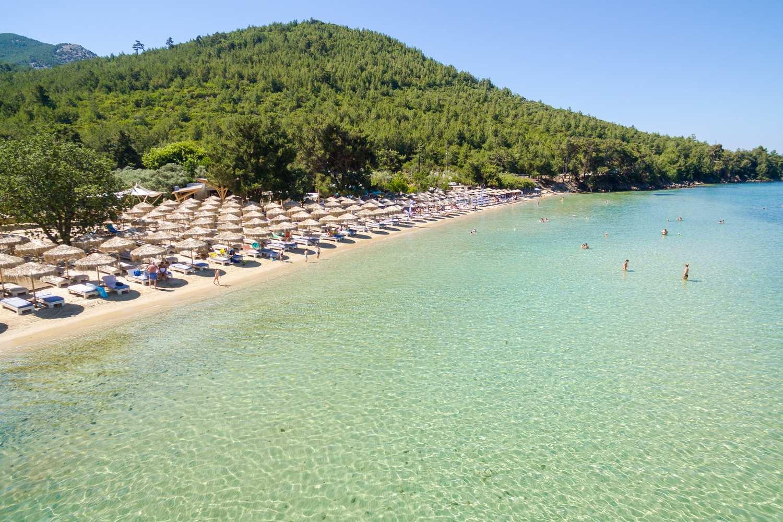 Pachis Beach Bar - Thassos